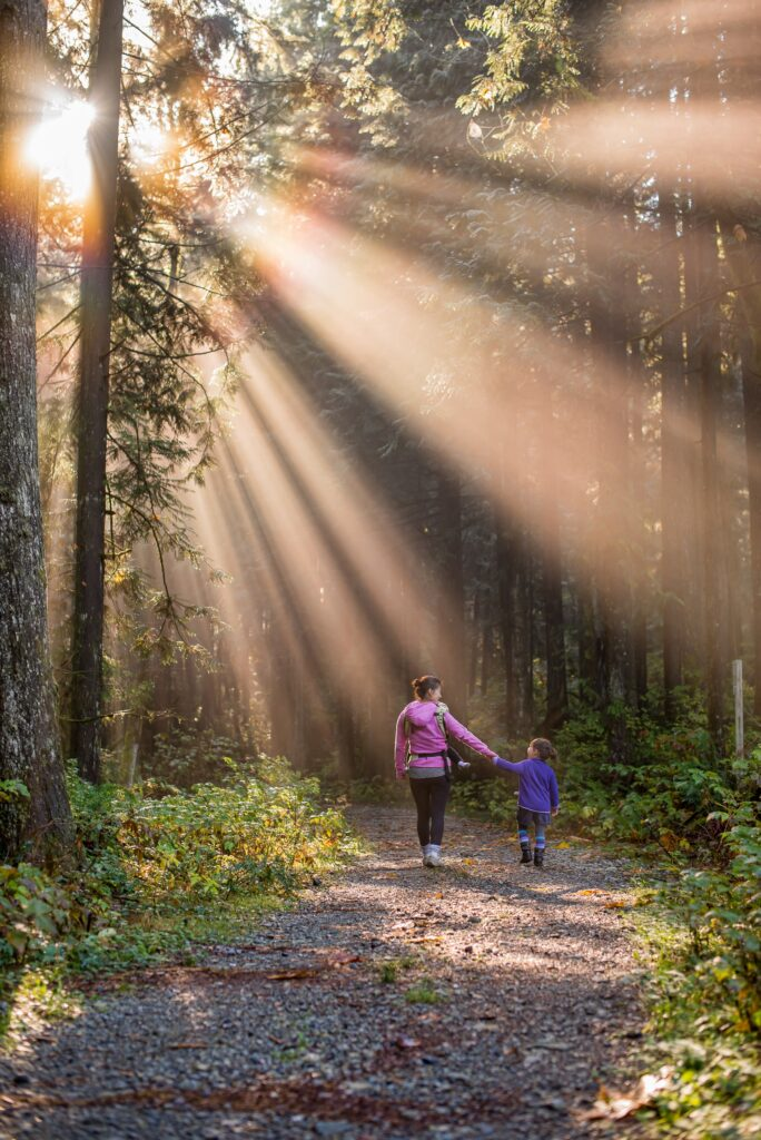 a woman and child hold hands while walking down a forest path illuminated with beams of sunshine
